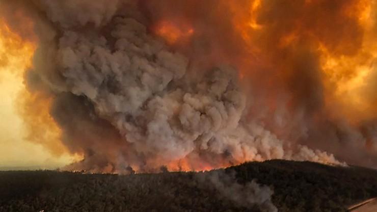 Ogień pochłania Australię. Zginęło już co najmniej 17 osób