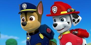 Bąbelkowy świat gupików i Psi Patrol