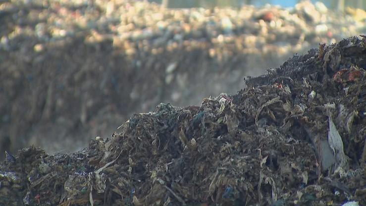 Zwieźli 55 tys. ton rakotwórczych odpadów, zarobili miliony