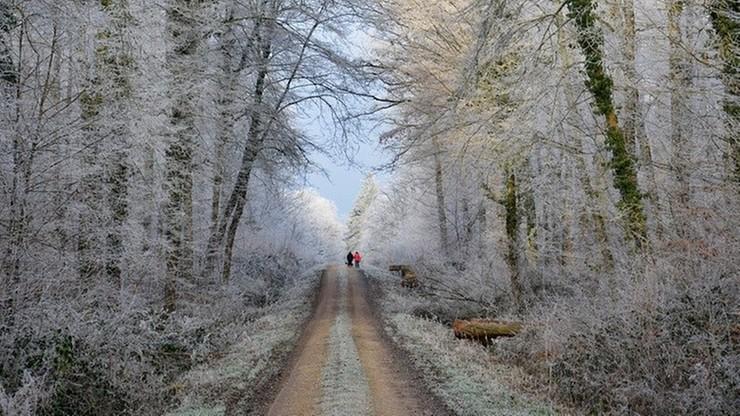 Pierwszy podmuch zimowej aury. Prognoza na weekend
