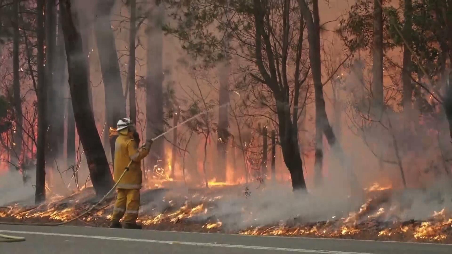 """Australia wciąż walczy z pożarami. """"Nasz dom zniknął, po prostu zniknął"""""""